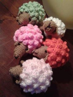 Pecorelle multicolor