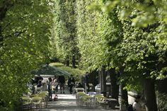 Café du Musée Rodin 79 rue de Varenne 75007 Paris