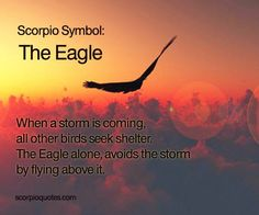 #Scorpio Symbol: EAGLE: When a storm is coming, all the other birds seek shelter. The Eagle alone,...
