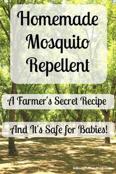 Grandpa's Homemade Mosquito Repellent Homemade Mosquito Repellent is a safe alternative to the chemical sprays sold in stores and as an added bonus it's safe for babies. Read the recipe here Mosquito Repellent For Babies, Mosquito Repellent Essential Oils, Natural Mosquito Repellant, Mosquito Repelling Plants, Insect Repellent, Baby Bug Repellant, Spider Repellant, Essential Oil Bug Spray, Citronella Essential Oil