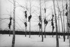 FotoFest 2012 focuses on Russian Contemporary Photography _ Mikola Gnisyuk, People in Trees (The Rooks Have Arrived), Black White Photos, Black And White Photography, Contemporary Photography, Art Photography, People Photography, Old Photos, Vintage Photos, In The Tree, Hieronymus Bosch