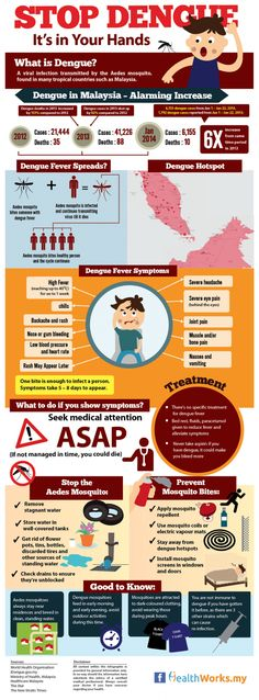 Dengue fever can be diagnosed through blood testing to see if the antibodies or viruses are within the blood.