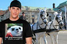 AUSTRIA es pandastica! - Vuelvo pronto!