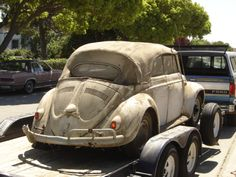 Barn find ovel windowed convertible VW bug!