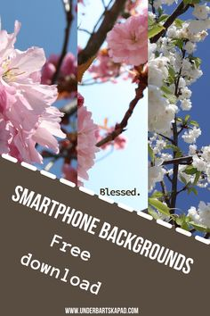 Christian Smartphone Backgrounds - iPhone Wallpapers - Bible Verses