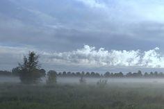 Morning mist by **  REgiNA  **  on 500px