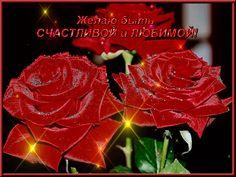 Поздравления с 8 Марта в прозе » Женский Мир