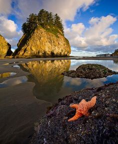 Second Beach, La Push, Washington - SUCH a beautiful place!  And right near the Hoh Rainforest!