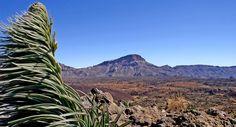 Paysage dans le parc national de las Cañadas del Teide, sur l'île de Ténérife, dans les Canaries (Espagne).