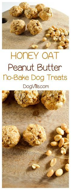DIY Pets : Honey Oat Peanut Butter Dog Treat Recipe, No Oven Required Ready for a great no-bake hypoallergenic dog treat recipe? Whip up a batch of our honey oat peanut butter balls for your pooch today! Sharing is caring, don't forget to share ! Dog Cookie Recipes, Homemade Dog Cookies, Dog Biscuit Recipes, Homemade Dog Food, Dog Treat Recipes, Dog Food Recipes, Food Tips, Food Ideas, No Bake Dog Treats