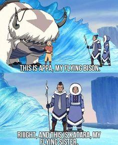 Avatar the last Airbender sokka aang appa katara Avatar Aang, Avatar Airbender, Avatar The Last Airbender Funny, The Last Avatar, Avatar Funny, Team Avatar, Atla Memes, Memes Humor, Cartoons