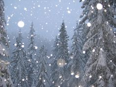 Winter.   ahhhhhhhhhh...