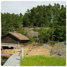 Ajolanranta,Rymättylä,Finland Archipelago, Finland, Cabin, Sea, House Styles, Home Decor, Decoration Home, Room Decor, Cabins