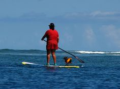 cool Paddle boarding with her dog / http://www.paddleboardshop.org/?p=108
