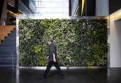 At Goodyearu0027s Global Headquarters, The Walls Are Alive. Theyu0027re #livingwalls !