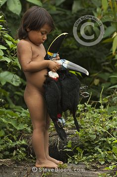 Huaorani Indian child holding hunted toucans. Gabaro Community, Yasuni National Park, Amazon rainforest, Ecuador, South America.