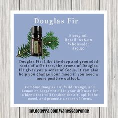 Combo of Douglas Fir, Wild Orange, and Lemon or Bergamot for calming focus and air freshener.