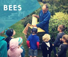 Monday 20th March Yummy honey in my tummy! We recently came across a Nature's Way book called 'Bees and Honey' which our children have taken great interest in. It is a very scientific children's pu…