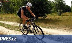 Cyklistu na Domažlicku srazil z kola jelen, pak odběhl do lesa