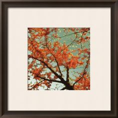 Sunset Forest II Framed Art Print (don't like the matte, but the rest is lovely -- and now we know where to get that matte changed!)