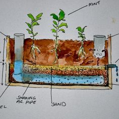 Milkwood PDC student design for a wicking bed - simple, affordable solutions to everyday needs...