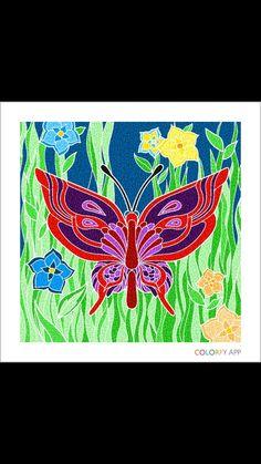 Brenda colorfy app