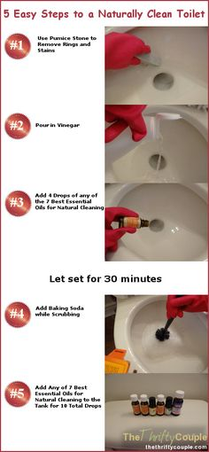 Are you ready to face the toilet with cleaning??  Well, it will treat you much nicer if you clean it nicely! And by nicely, I mean naturally! It is safe for everyone to clean your toilet naturally – the kids, the cat, the dog, the toilet and your home! These are the 5 simple steps... and it will keep cleaning and freshening once you walk away too!