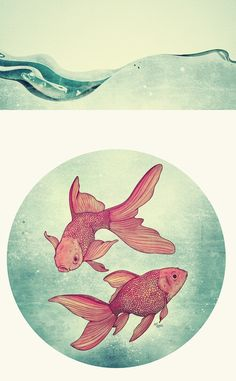 Goldfishes,   by Mike Koubou