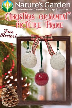 Free Christmas Ornament Picture Frame Recipe by Natures Garden