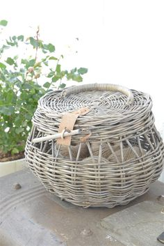 bowl-shaped wicker basket, open sides, lid