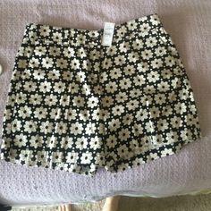 Loft shorts Size 10 flowers black and cream LOFT Shorts Bermudas