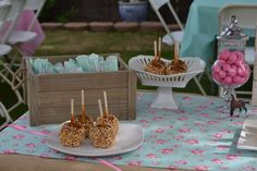 Horse, Burlap, Pony, Floral, Pink, Teal, cowgirl, third, shabby chic Birthday Party Ideas | Photo 7 of 39 | Catch My Party