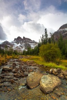 Wonder Pass (Alberta/B.C. border) by Juan