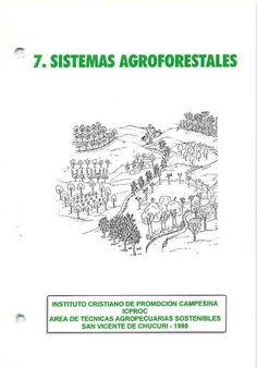 Title Slide of SISTEMAS AGROFORESTALES