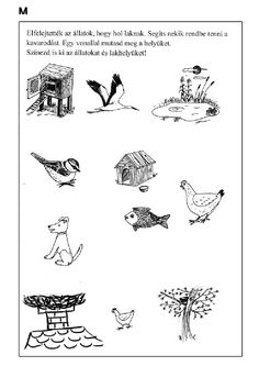 Archivio album Spring Activities, Toddler Activities, Cicely Mary Barker, Arabic Alphabet, Elementary Science, Farm Animals, Worksheets, Coloring Pages, Kindergarten