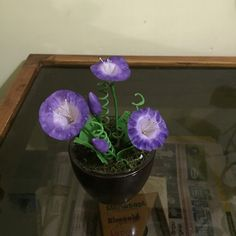 #Morning glory #flowers #Thai clay #Thai #Clay #ceramic #orchids #handmade #craft # Bonsai #purple # realistic #flower