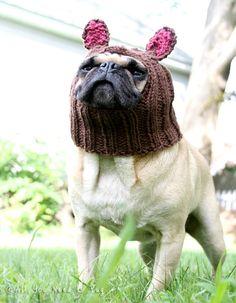 Dog Hat  Little Bear Hat by AllYouNeedIsPugShop on Etsy
