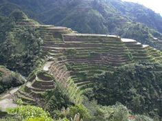 Banaue Rice Terraces (Spectacular terraces were carved out from mountain ranges some 2000 years ago with primitive handtools) - Banaue, Phillipines Banaue Rice Terraces, Philippine Tours, Attraction, Exotic Places, Life Is An Adventure, Culture Travel, Manila, Oh The Places You'll Go, Wonders Of The World