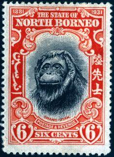 1931 Cincuentenario de la fundación del Estado North Borneo. (2/5)