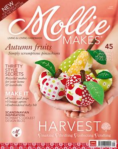 Just subscribed to this magazine.  Love the craft kit attached.  Got my first one at Magnation