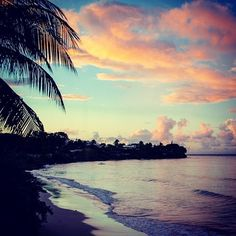 Morning in Barbados