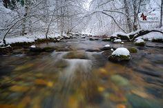 Andrew Kumler - Brice Creek in Oregon's Umpqua National Forest