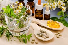 When There Is No Doctor: 7 Natural Antibiotics to Use When Medicines are Not Available