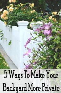 5 Ways to make your backyard more private