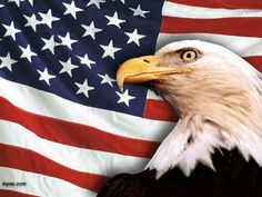 US Flag Images. Free   american flag clip art wall paper click on images to get the larger ...
