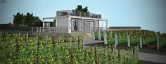 B & B, Bungalow, Vineyard, Plants, Design, Vine Yard, Vineyard Vines, Plant