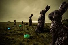 This is the REAL Easter Island.  LOL