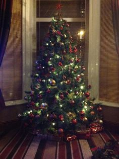 Christmas tree decorated with red and gold