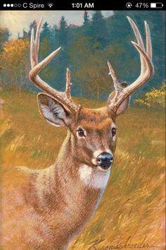Shop Wild Wings for original paintings by Lee Kromschroeder! Wildlife Paintings, Wildlife Art, Animal Paintings, Deer Paintings, Deer Photos, Deer Pictures, Printable Animals, Great Works Of Art, Deer Art