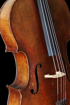 cello - photo/picture definition at Photo Dictionary - cello word and phrase defined by its image in jpg/jpeg Music Pics, Music Images, Sound Of Music, Music Is Life, Photo Dictionary, Violin Family, Cello Music, Music Heals, Science